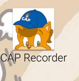 DWE caprecorder
